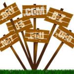 domain-names-1772240_640